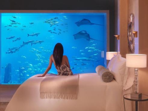 Poseidon-Undersea-Resort-Fiji-1